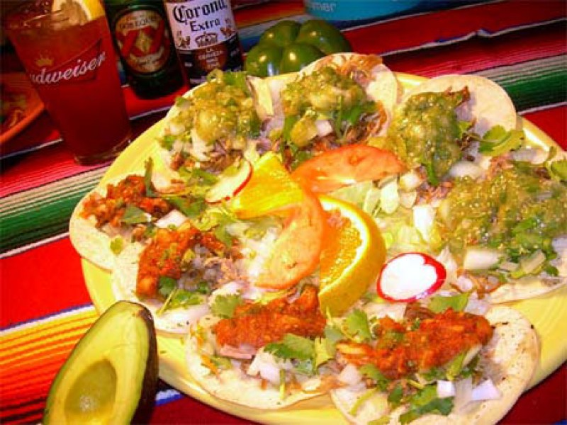 Soft Taco Appitizer Plate, Carnitas, Chicken and Beef